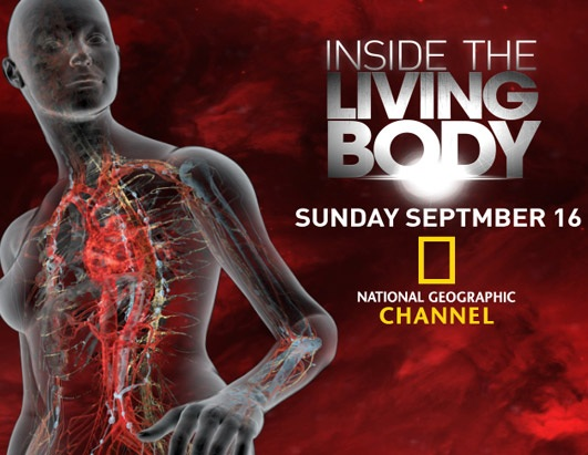 Inside--The-Living--Body