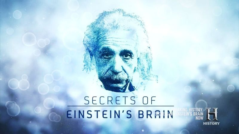 Secrets-of-Einstein-s-Brain-Cover