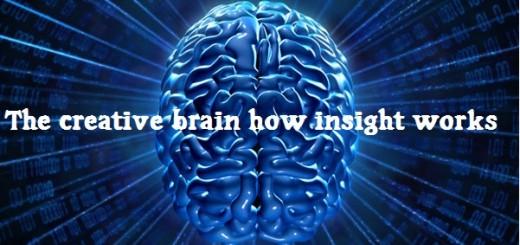 03_brain