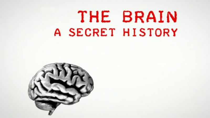 The-Brain-A-Secret-History-Cover
