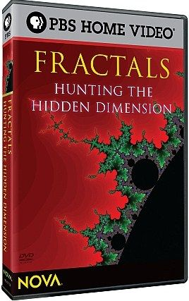 Fractals-Hunting-the-Hidden-Dimension-Cover