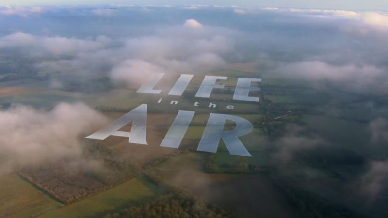 Life-in-the-Air-Cover