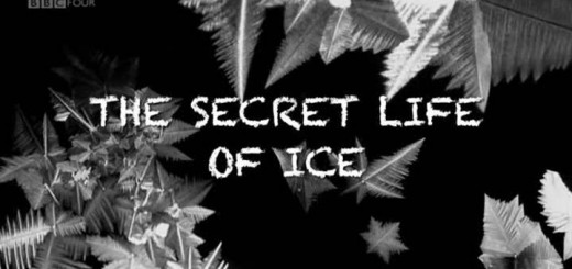 the-secret-life-of-ice-cover