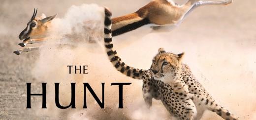 the-hunt-title-bdh